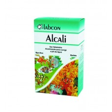 22936 - ALCON LABCON ALCALINO 200ML *