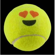 16986 - MISTURA P/PASSAROS SILVESTRES 10X500G